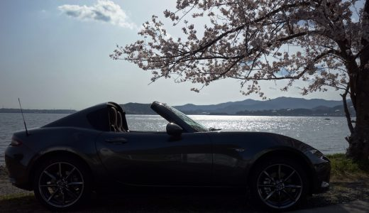 ロードスターRFと浜名湖畔の桜