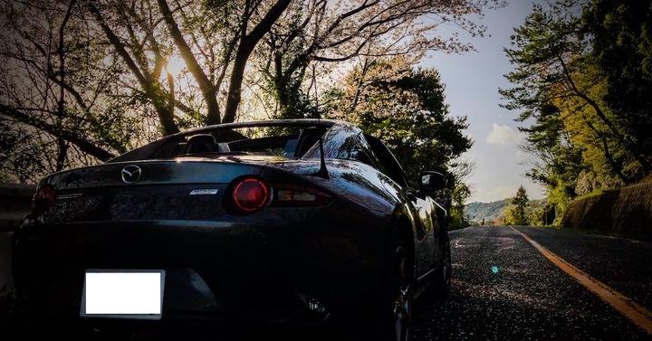 ロードスターRFと浜名湖の桜・スポット2